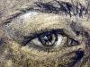Close up  Self Portrait (DW-001)