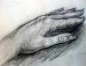 Hands Study (DW-033)