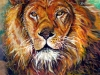 Aslan_Lion -of-the-Tribe-of-Judah(PT-001)